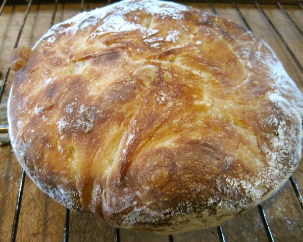 I made bread for the first time!  Almost as exciting as writing a novel!  :-)